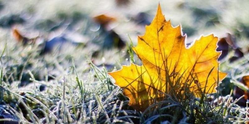 В Україні похолодає до -8, опадів не передбачається