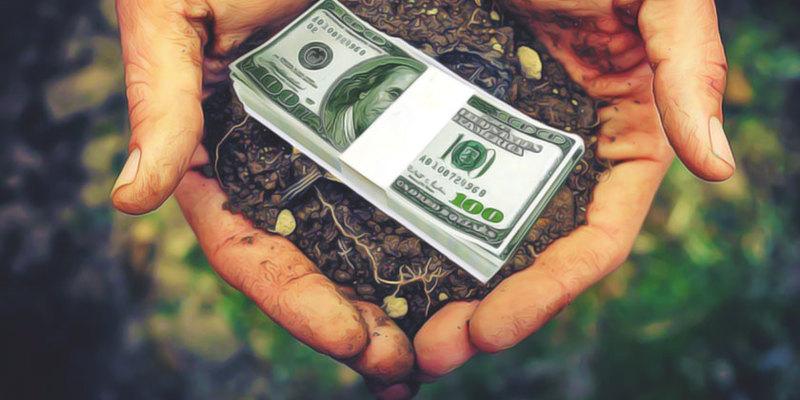 Опитування: за відкриття ринку землі — лише 24% українців