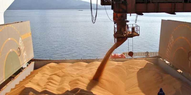 Прибуток від експорту українського зерна «осідає» в офшорах, – дослідження