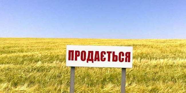 Іноземцям заборонять купувати українську землю, а перепродаж землі обкладуть податками — радник прем'єра