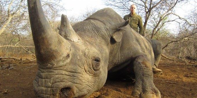 У мережі з'явилися фото Шуфрича з убитими африканськими тваринами
