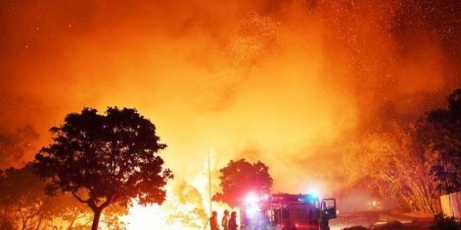 Лісові пожежі в Австралії: кількість загиблих зросла до 19