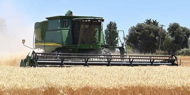Україна увійшла в трійку найбільших експортерів сільгосппродукції в Євросоюз