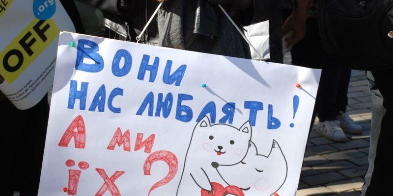 На стадії підготовки перебуває законопроєкт про заборону тварин у цирках України з 2021 року– Подоляк