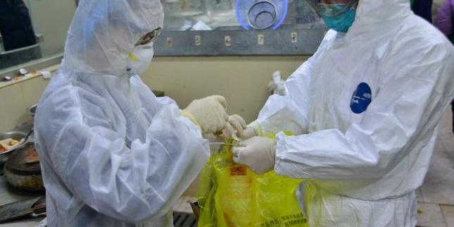У світі понад 24 тисячі інфікованих китайським коронавірусом, майже 500 людей померли