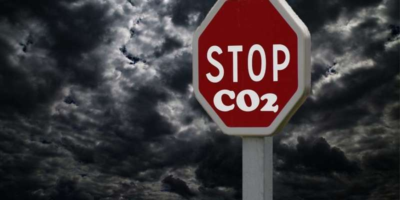 Забруднення заважає зростанню бактерій, що виробляють кисень