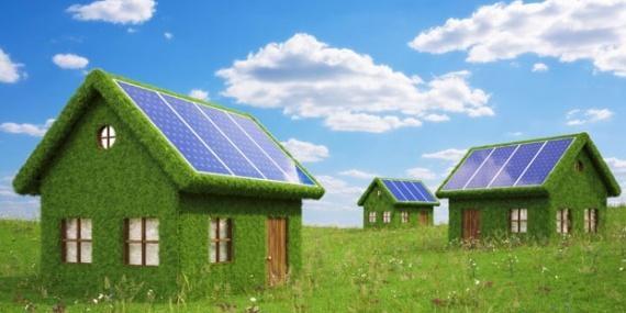 Заступник Оржеля порівняв інвесторів у «зелену» енергетику з гангреною