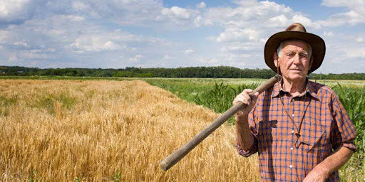 Фермери забили тривогу через карантин в Україні: банки бойкотують