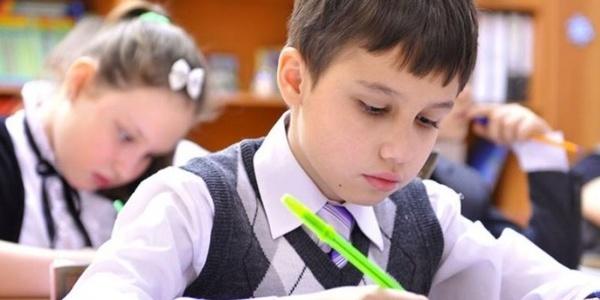 Школярам України влаштують перевірку дистанційного навчання