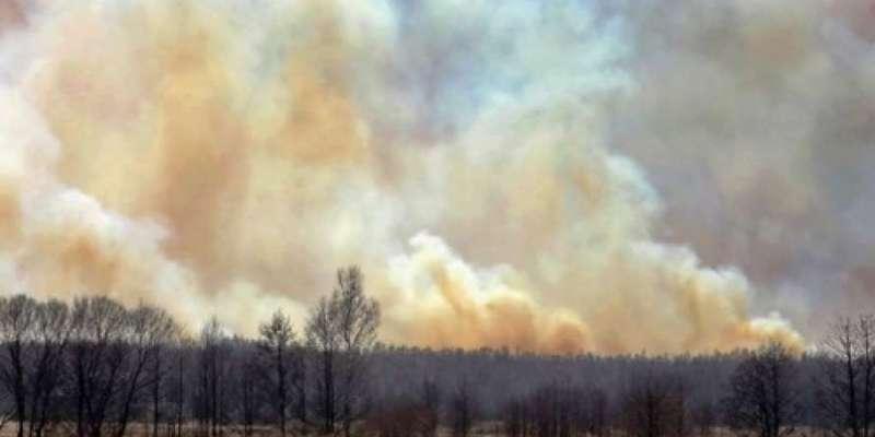 У Чорнобильській зоні виникла ще одна пожежа