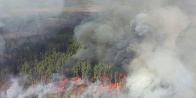 Рятувальники продовжують гасити пожежі на території чотирьох лісництв у зоні ЧАЕС