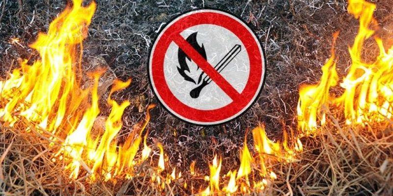Президент підписав законопроєкт про збільшення штрафів за спалювання трави у18 разів