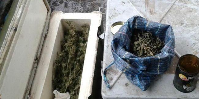Коронавірус негативно впливає на світову торгівлю наркотиками, - AP