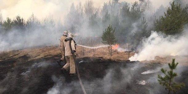 На Житомирщині виникла нова пожежа — ДСНС