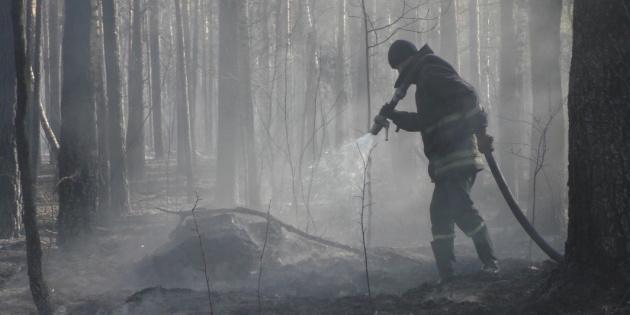 Рятувальники ліквідували два осередки пожежі на Житомирщині