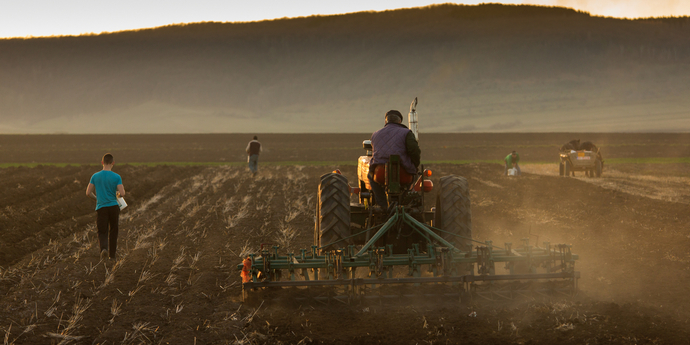 Конституційний суд просять скасувати закон про ринок землі