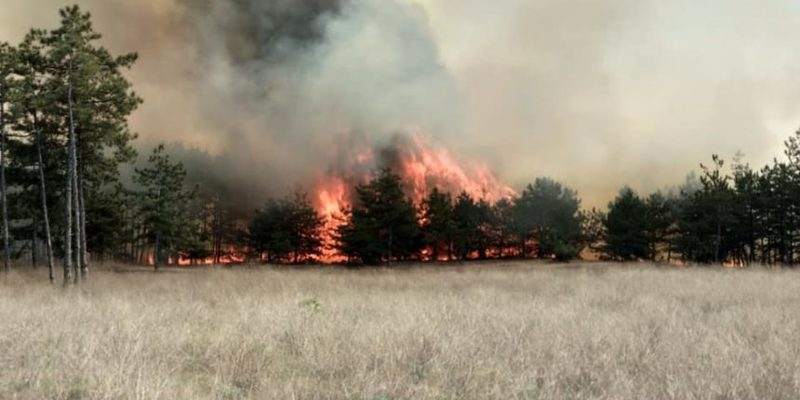 Над Україною нависла небезпека пожеж