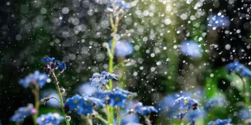 На вихідних очікуються дощі по всій території України